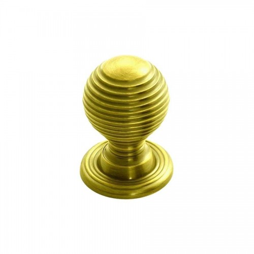 Polished Brass Queen Anne Reeded Knob | 23mm